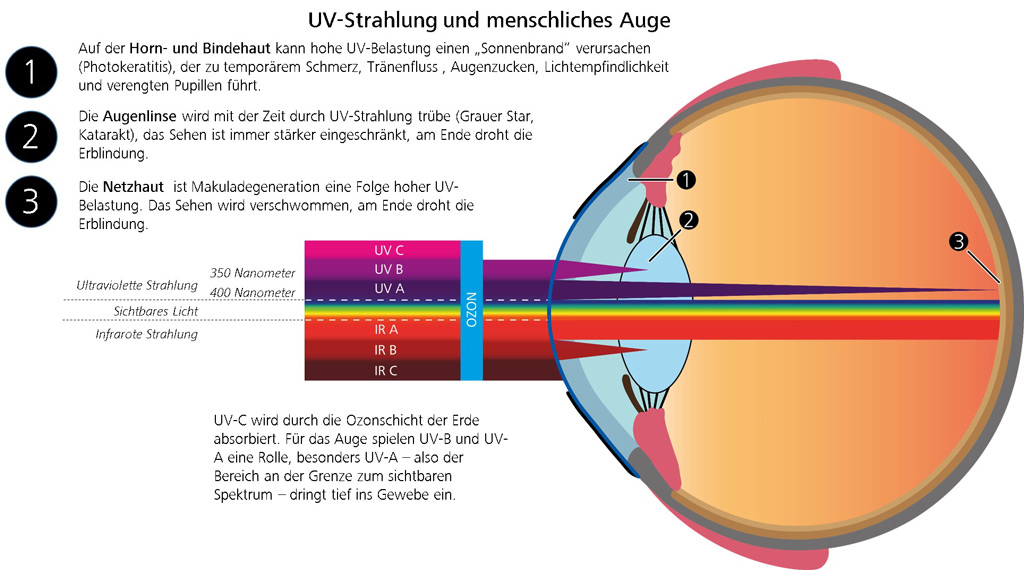 ZEISS UVProtect bei Optik Kainz in Horn